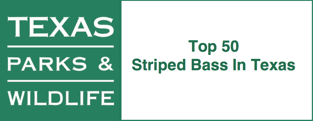 top 50 striped bass in Texas